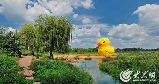 """""""大湿地 大河流"""" 十一莒县沭河湿地公园游览全攻略!图片"""