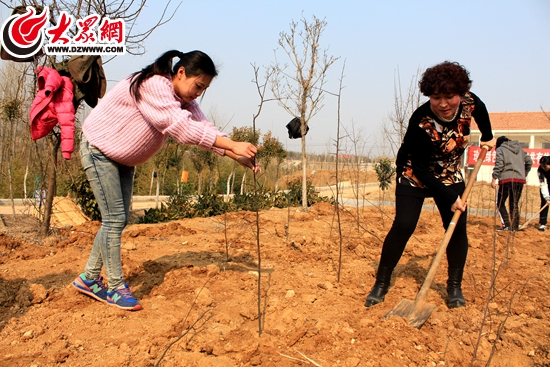 是我国的第37个植树节,在这个春日盎然的日子里,日照中瑞集团以及旗下