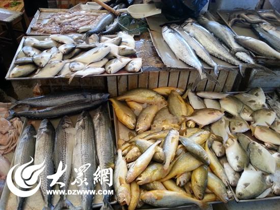 开海前探访日照海鲜市场 业内人士称价格将会走低