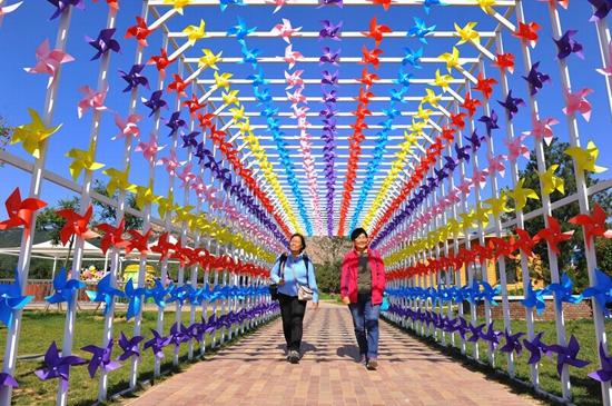 十几万只风车空降 沁园春风景区秋季风车秀即将开幕