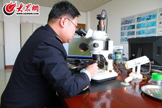 动植物产品的检验检疫监管,口岸疫情监测及防控等工作,防止动物传染病