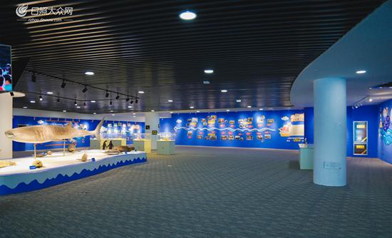 """海洋馆综合运用""""艺术 科技""""展示形式,打造集科普和教育相结合的海洋"""