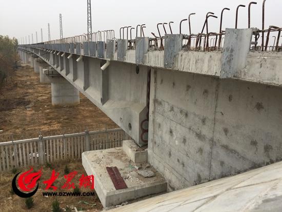 桥梁项目组织结构图